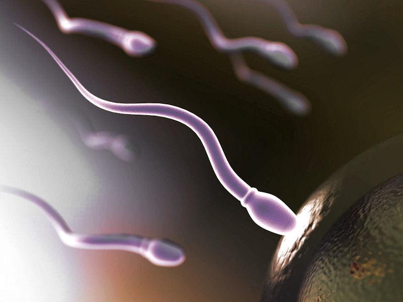 spermogramma-oralnim-putem
